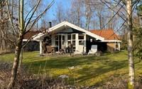 Sommerhus 21523