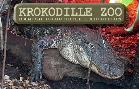 Krokodille Zoo (21km)