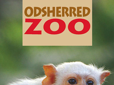 Odsherred Zoo (8km)