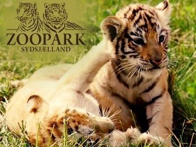 Zoopark næstved rabat Sommerland Sjælland