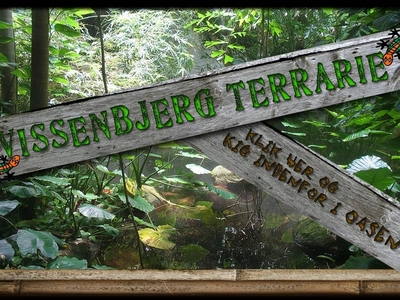 Terrariet