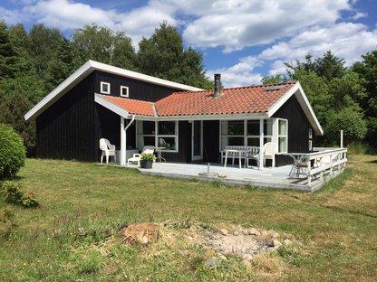 Sommerhus 11443