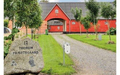 Sommerhus 11492