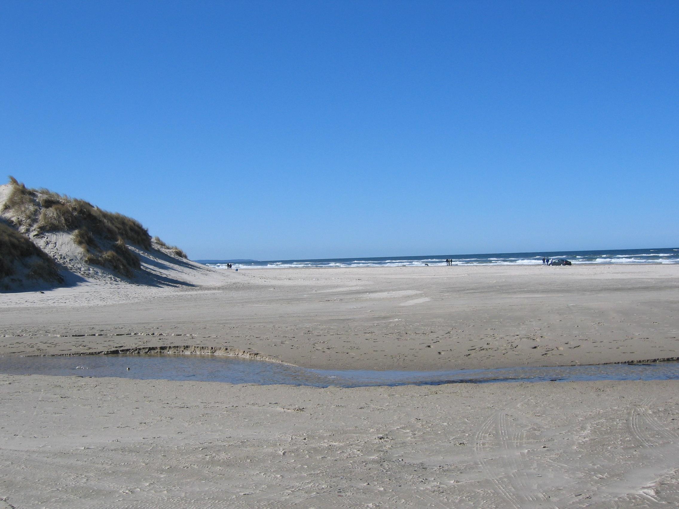 strand Saltum Strand