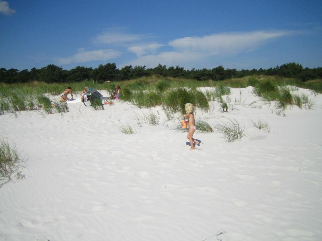strand Dueodde Strand