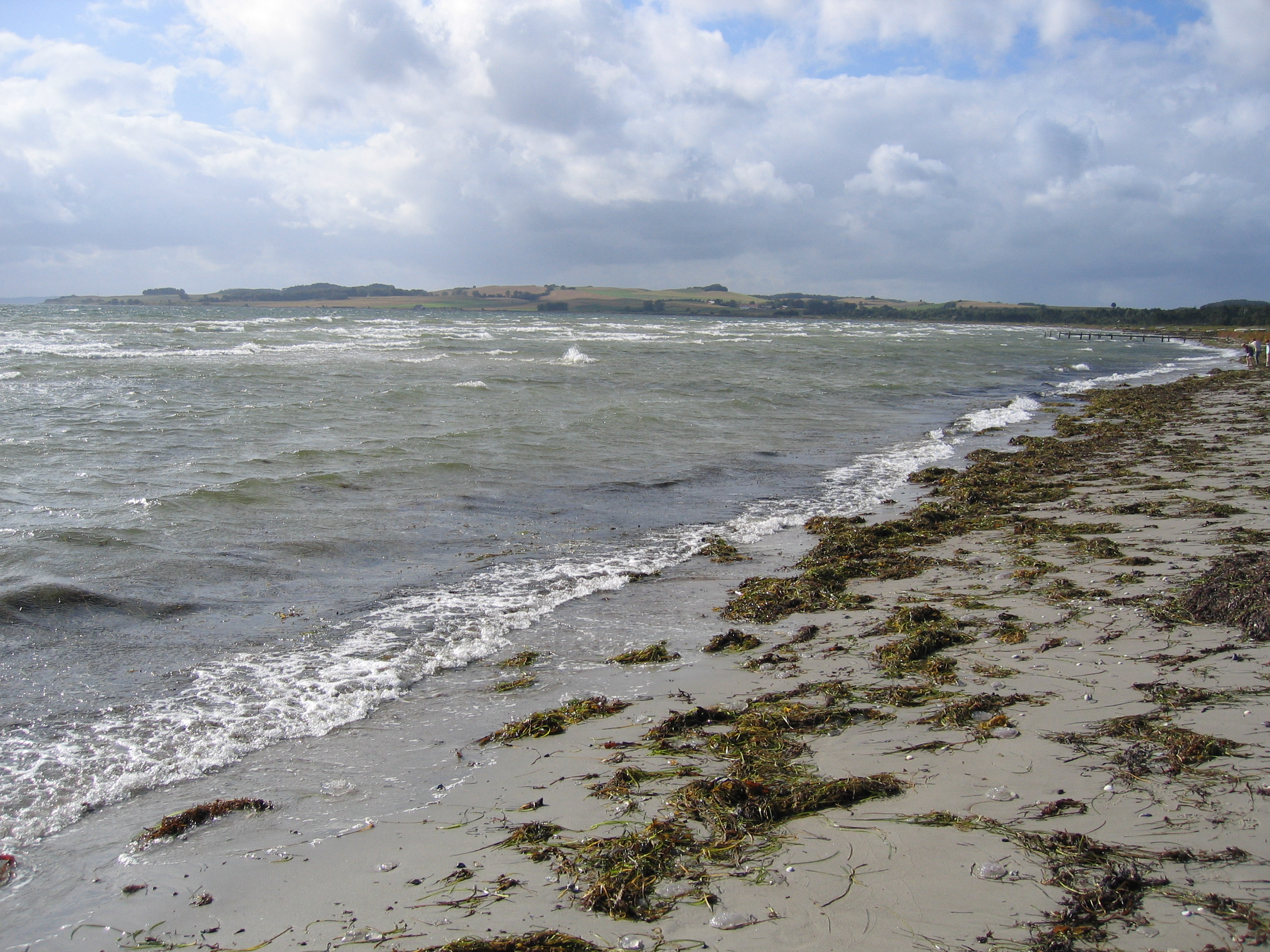 strand Begtrup Vig